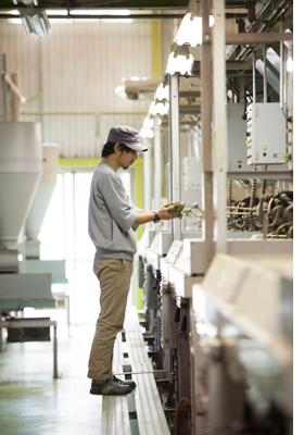 茶工房かはだ製茶工場